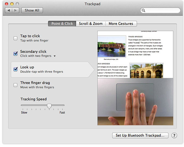 OS X Lion Trackpad preferences